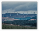 Forests give a horizontal pattern, but wind turbines always stand up